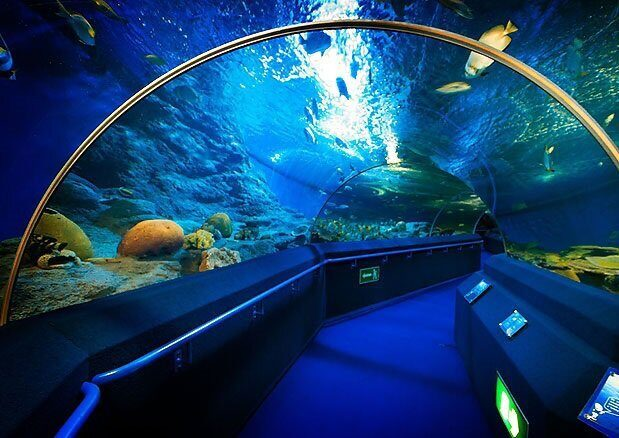Океанариум в Паттайе (Underwater World Pattaya)